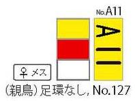 A11_02