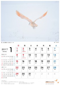 201701_a4