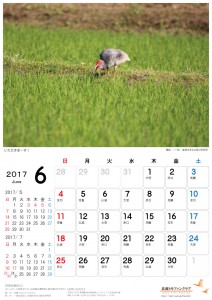 201706_A4