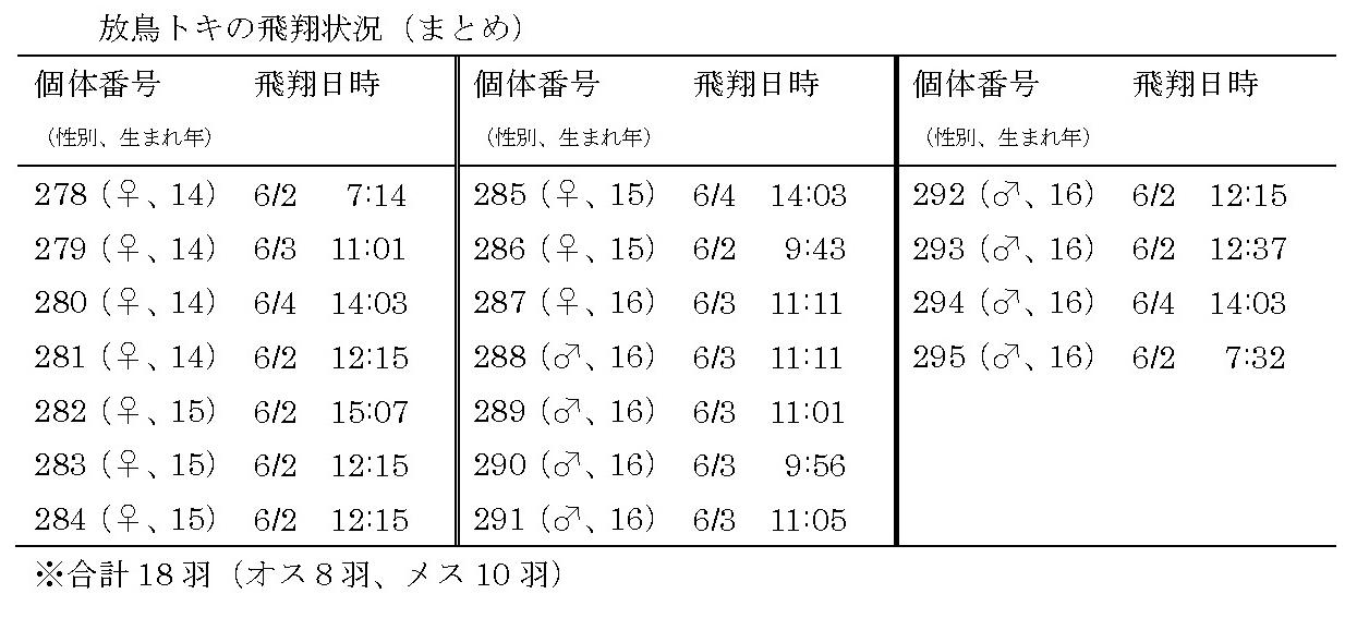 16th_toki