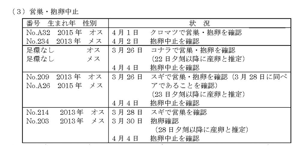 20180406_toki_03