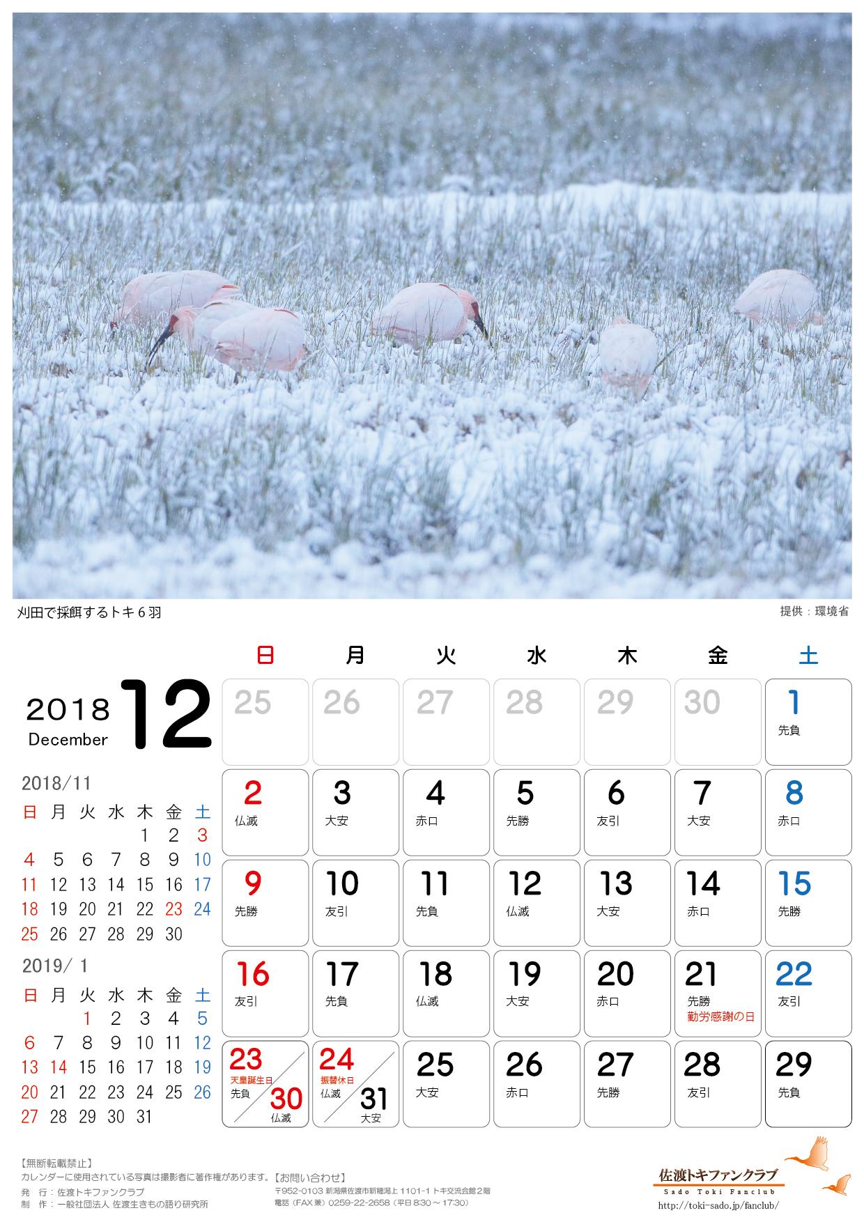 2018年トキカレンダー11月 12月無料配信のお知らせ 佐渡トキファンクラブ